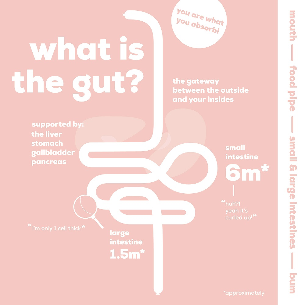 The Gut Stuff- Top tips on managing your gut health