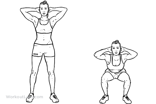 Bodyweight_Squat1.png