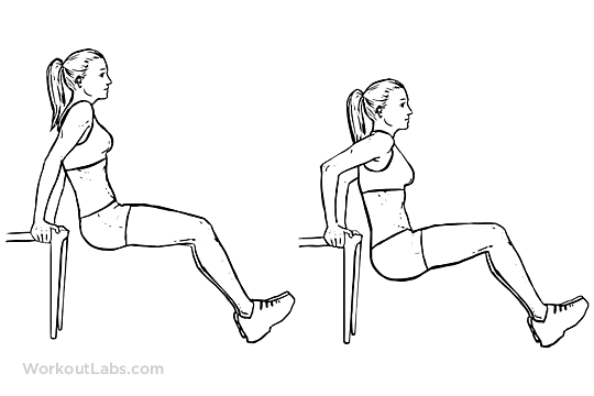 Chair_Tricep_Dip_F_WorkoutLabs.png