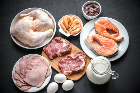 Various-sources-of-protein.jpg