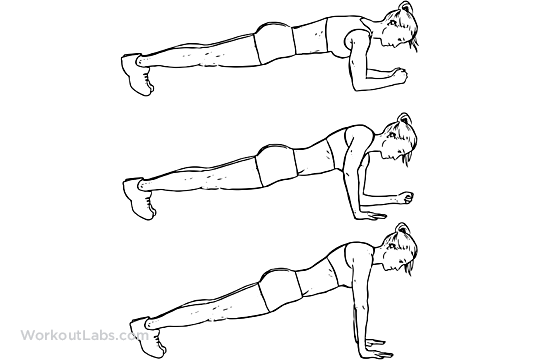 plank_to_pushup.png